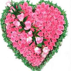 Pink Roses Heart 100 Flowers