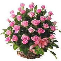 Pink Roses Basket 50 Flowers