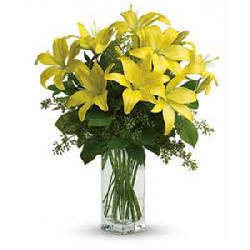 10 Yellow Lily in Vase