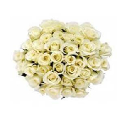 White Roses Bouquet 75 Flowers