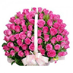 50 Rose Basket Pink