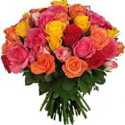 45 MIX ROSES BUNCH