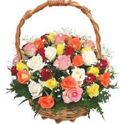 36 MIX ROSES IN BASKET