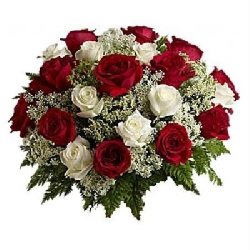21 RED N WHITE ROSES BUNCH