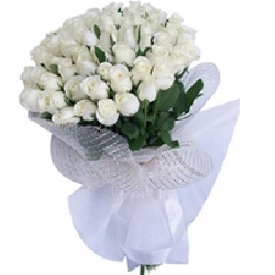White Roses Bouquet 60 Flowers