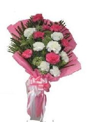 Pink and White carnations...