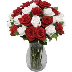 Red and White Roses in Vase...