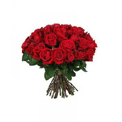 Hand bouquet of 50 red roses