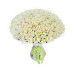 Bouquet Of 200 White Roses