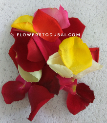 Rose Petals (mixed colours)...