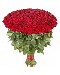 Bouquet bunch of 100 Red Roses