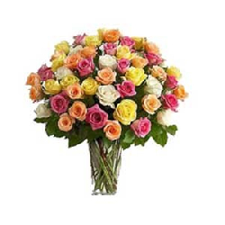 Mixed colour roses in Vase...